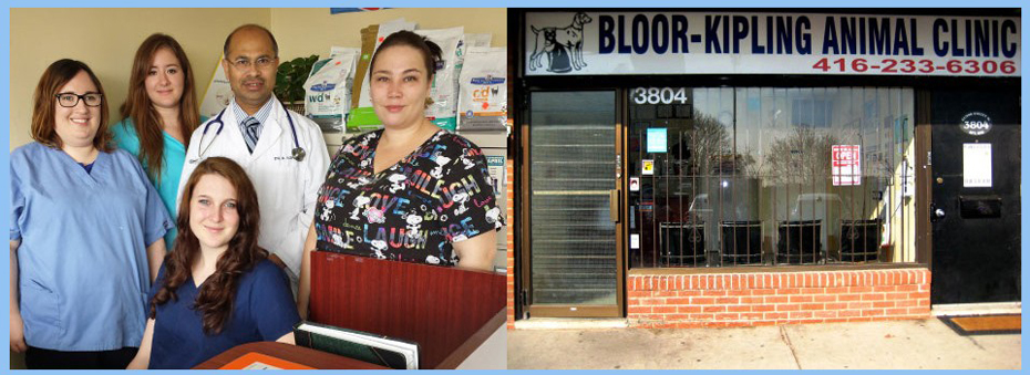 Bloor-Kipling Animal Clinic